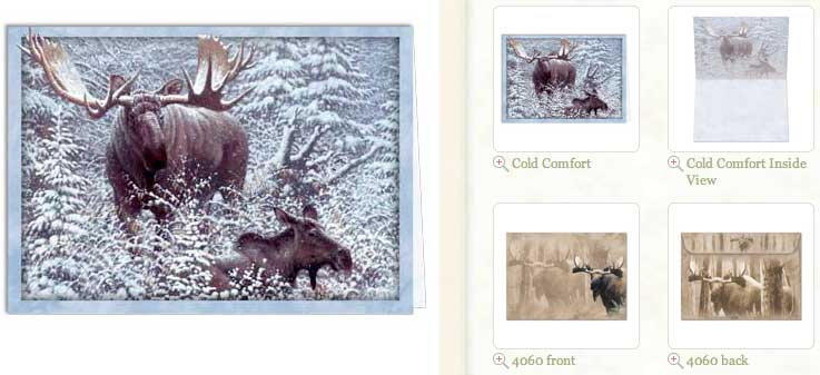 Cold Comfort... Blank Greeting Card